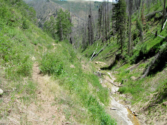 Lower Mill Canyon