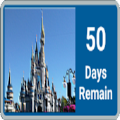 Unoffic Disney Vacation Count