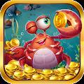 Săn cá thủy cung - Truy lùng kho báu