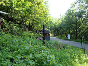 標識とバス停(右)
