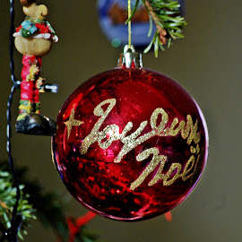 Souvenir by Ciprian Apetrei - Public Holidays Christmas ( decoration, christmas, brittany, bokeh, globe )