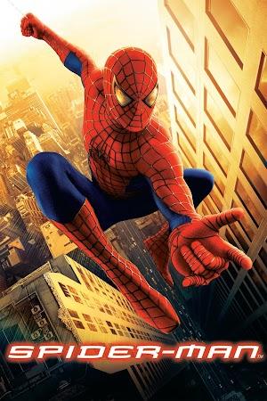 Spiderman (2002) 550MB 720P BRRip Dual Audio [Hindi-English] – HEVC