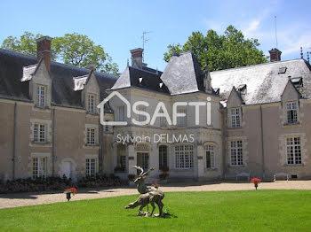 château à Amboise (37)