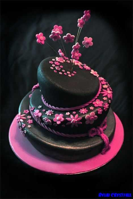 Cake Designs Ideas chocolate birthday cakes Birthday Cakes Design Ideas Screenshot