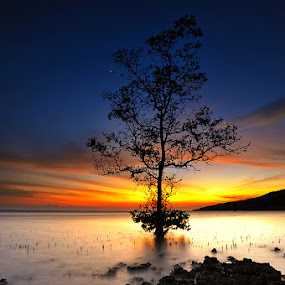 Untitled by Moh Fadly Fachruddin - Landscapes Sunsets & Sunrises