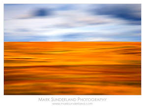 Photo: 'Blubberhouses Moor, Summer' from the 'Dales Light' series of limited edition prints