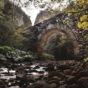 Old bridge by Vladeta Manic - Buildings & Architecture Bridges & Suspended Structures ( nature, stone, bridge, river,  )