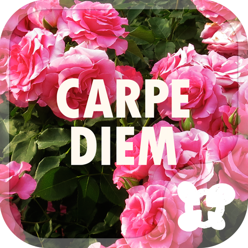 Flower Theme-Carpe Diem- Icon