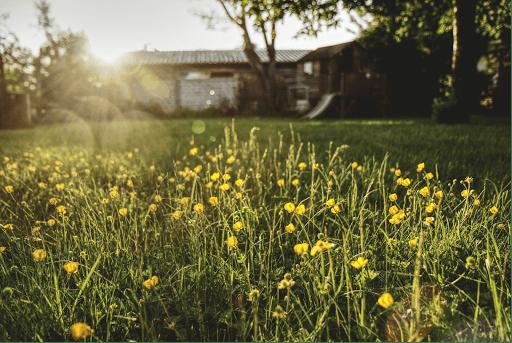 Sologne Conciergerie résidence secondaire Blois ménage jardinage travaux location