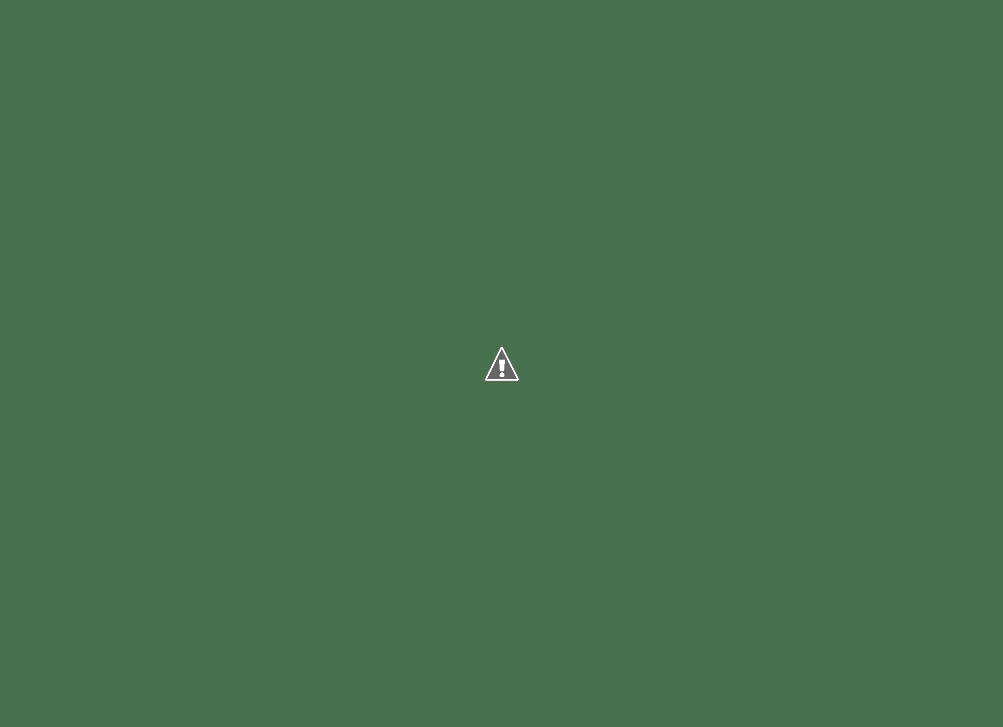 WindowsSDK