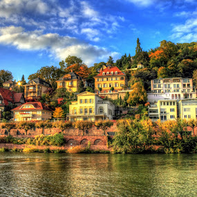 Houses by the River in Heidelberg, Germany by Charles Ong - Buildings & Architecture Homes ( heidelberg, relections, trees, germany, house, homes, river, hdr )
