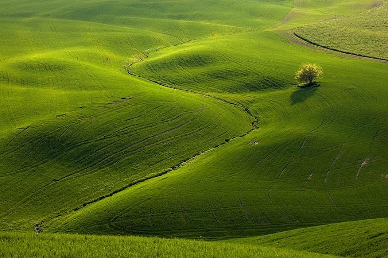 Photo: Снимки полей Моравии от фотографов Marek Kiedrowski и Krzysztof Browko.