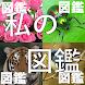 私の図鑑 - Androidアプリ
