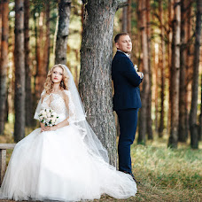 Wedding photographer Elena Tolubeeva (itzy). Photo of 15.01.2018