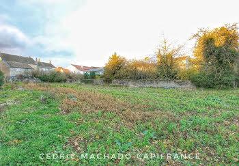 terrain à Francheville (21)