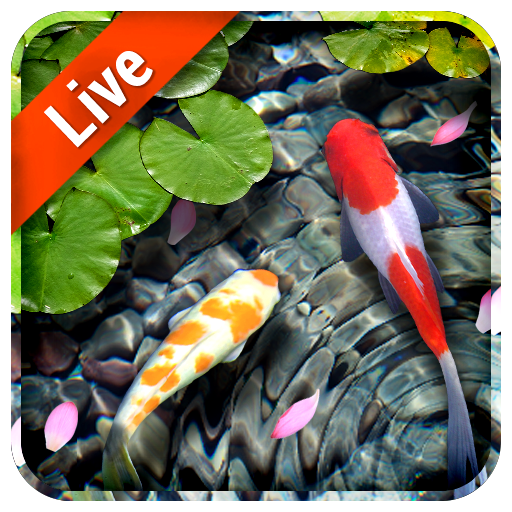 Koi Fish Live Wallpaper 3d 1101307 Adfree Apk For Android