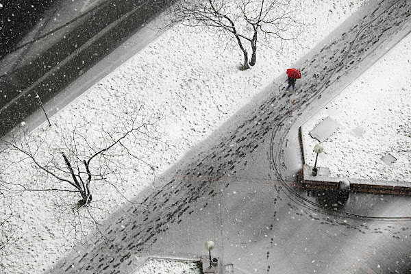 Neve in città di Yoyo
