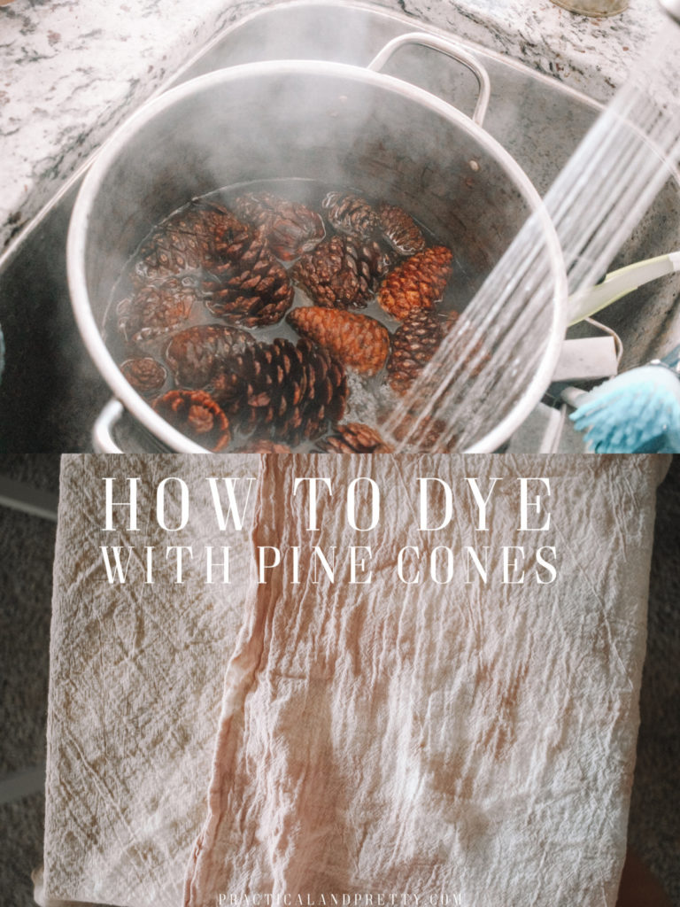 Next time you see some pine cones gather them up and put together this easy dye vat to make a beautiful pink color or a nice gray with an iron bath.
