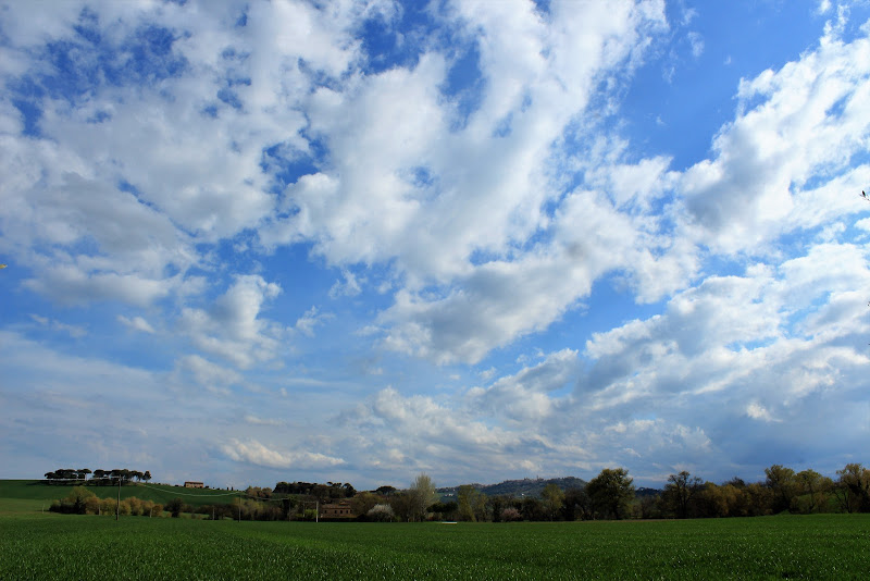 nuvole cotonate di andreaparenti16