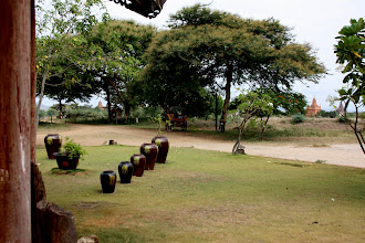 Photo: Year 2 Day 57 -  Hotel Grounds and View of Temples