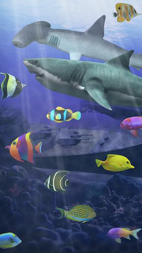 shark aquarium live wallpaper - photo #11
