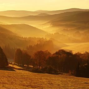 by Věra Dobrovolná - Landscapes Forests