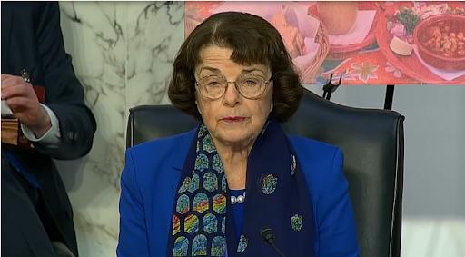 Ashli Babbitt's Mom Was Told Sen. Feinstein Had No Time for Her