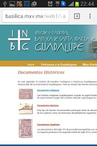Nossa Senhora de Guadalupe screenshot 4