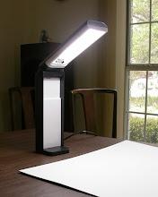 Photo: Collapsible florescent lights facilitate focusing.