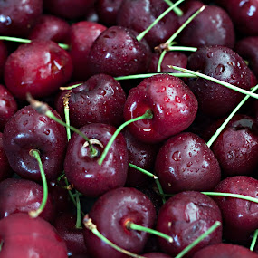 A Bunch of Cherries by Sherry Hallemeier - Food & Drink Fruits & Vegetables ( fruit, red, art, fine art, healthy, framed art, eating, canvas, bunch, cherries, close up,  )
