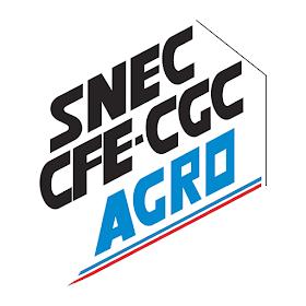 SNEC CFE CGC