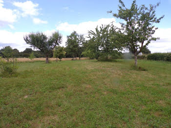 terrain à Boissey (01)