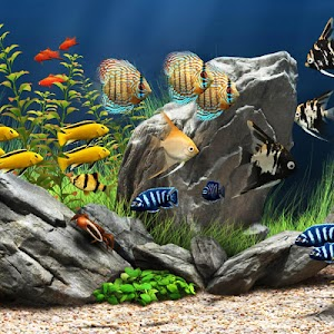 Aquarium Live Wallpaper screenshot 2