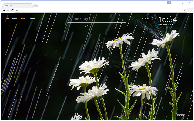 Rain Wallpaper HD New Tab Rainy Day Themes