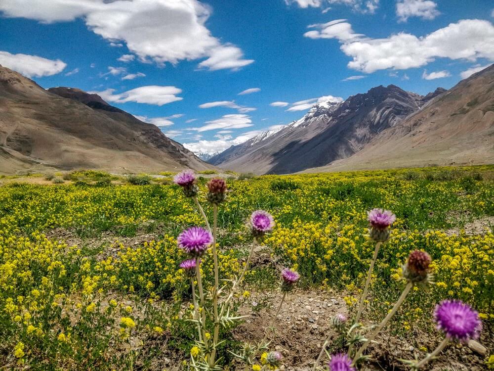 village+kaza+spiti+valley+images+himachal+pradesh+india