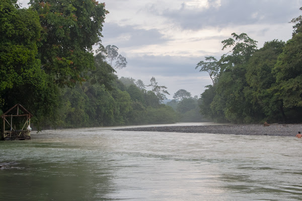 The Kualsa Buluh River in Gunung Leuser National Park. Photo: Quino Alonso