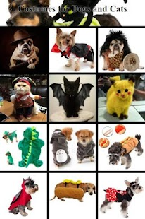 Costumes for Dog and Cats - náhled