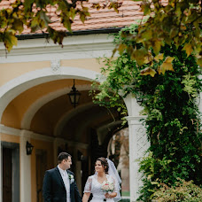 Wedding photographer Rudolf Töltésy (toltesyrudolf). Photo of 08.04.2019