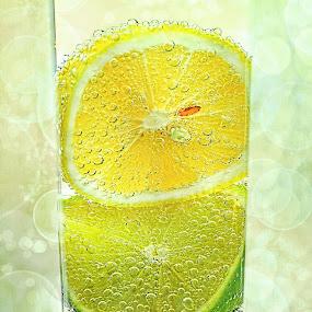 Effervescent Freshness by Kaye Menner - Food & Drink Alcohol & Drinks ( citrus fruit, colorful, still life, kaye menner fruit, kaye menner photography, yellow, fruit art, kaye menner, spring, bokeh, photography, carbonated, refreshing, fresh, lemonade, drink, air bubbles, glass, effervescent, visions of spring, water, fruit, green, lemon soda, texture overlay, bubbles, lemon squash, lime, kitchen, lens flare, effervescent freshness, citrus, beverage, yellow green, food, kitchen art, summer, healthy, freshness, citrus fresh, spring bokeh, lemon )
