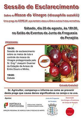Junta de Freguesia de Penajóia vai realizar uma sessão de esclarecimento agrícola sobre a mosca do vinagre