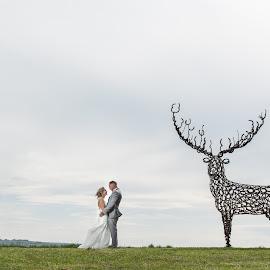 STAG WILD by Nigel Hepplewhite - Wedding Bride & Groom ( love, stag, couple, bride and groom, artwork, landscape )