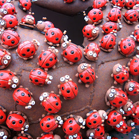 Red color for ladybird by Vida Jankaitiene - Artistic Objects Other Objects (  )