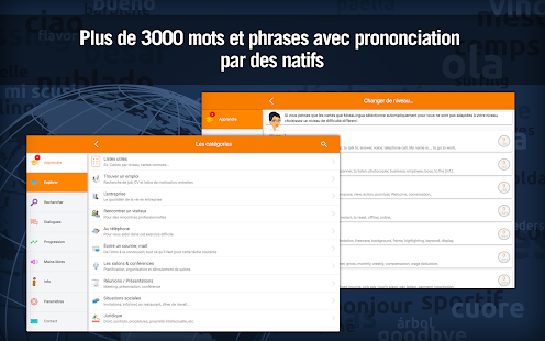 Apprendre l'Anglais Business- screenshot thumbnail