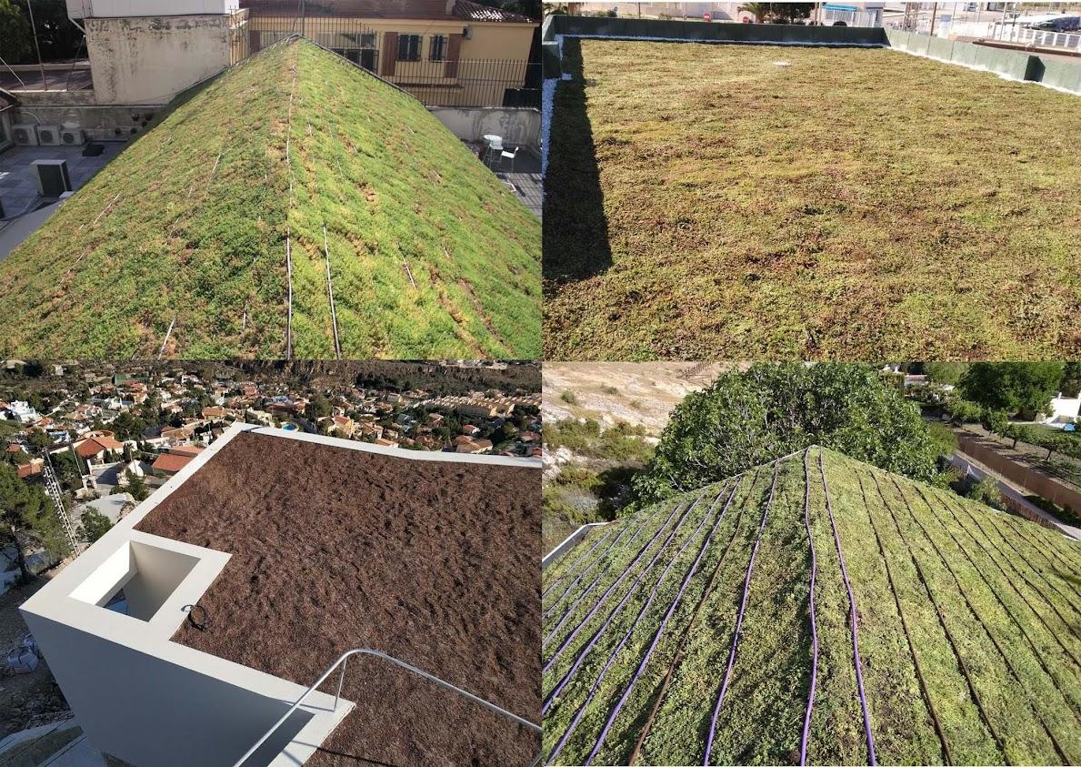 Diferentes cubiertas vegetales que hemos realizado en diferentes sitios de España.