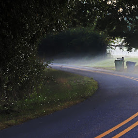 Road in the Morning by Grady  Welch - Transportation Roads ( vibrant, road, street, yellow, morning )