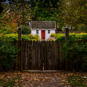 Welcome Home by Frank Kruller - City,  Street & Park  Historic Districts ( red door, hedge, garden, white house, gate )