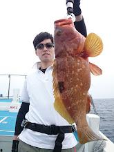 Photo: おおーっ! 高級魚のキジハタ!