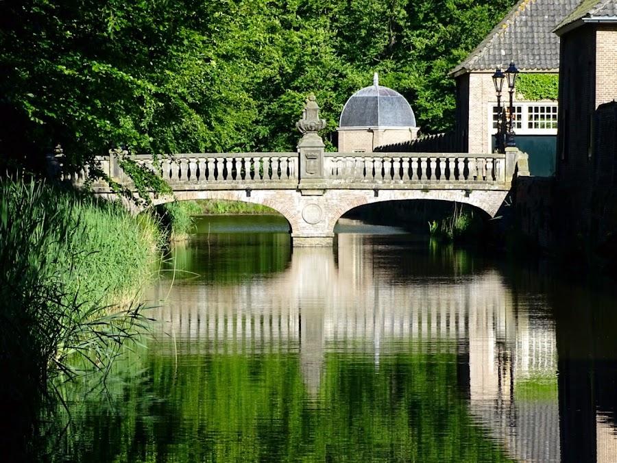 by Joyce Dales - Buildings & Architecture Bridges & Suspended Structures
