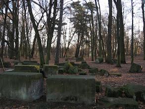 Photo: Pozostałości pałacu w Skorogoszczy.