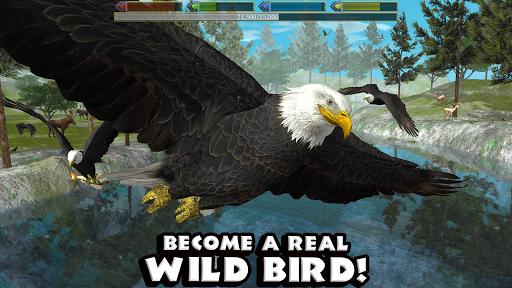 Ultimate Bird Simulator screenshot 1